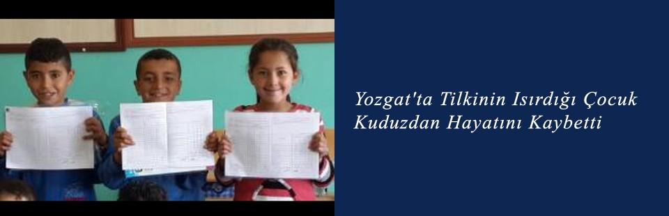Yozgat'ta Tilkinin Isırdığı Çocuk, Kuduzdan Hayatını Kaybetti