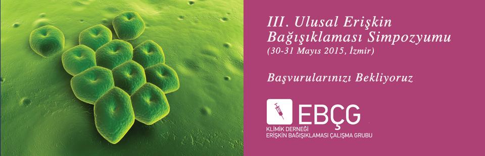 UEBS_III_Sayfa.Ust.Banner.2