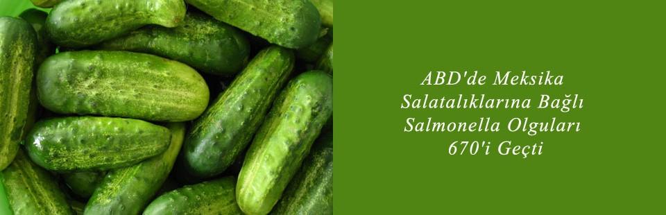 ABD'de Meksika Salatalıklarına Bağlı Salmonella Olguları 670'i Geçti