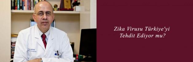 Zika Virusu Türkiye'yi Tehdit Ediyor mu
