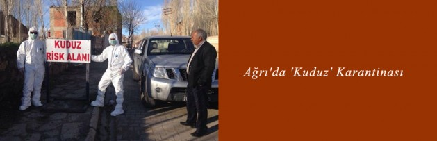 Ağrı'da 'Kuduz' Karantinası