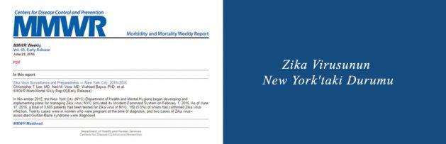 Zika Virusunun New York'taki Durumu