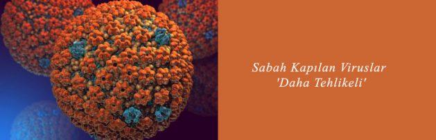 Sabah Kapılan Viruslar 'Daha Tehlikeli'