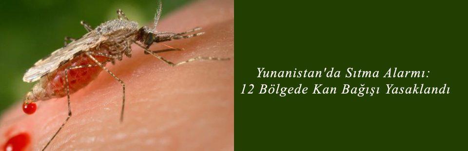 Yunanistan'da Sıtma Alarmı 12 Bölgede Kan Bağışı Yasaklandı