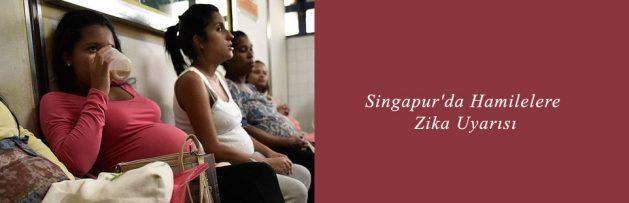 Singapur'da Hamilelere Zika Uyarısı