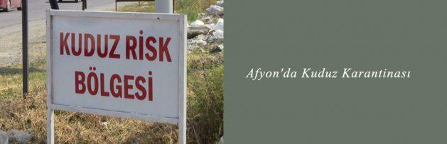Afyon'da Kuduz Karantinası