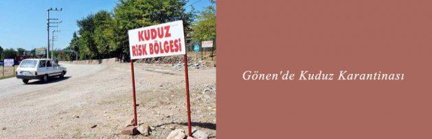 Gönen'de Kuduz Karantinası