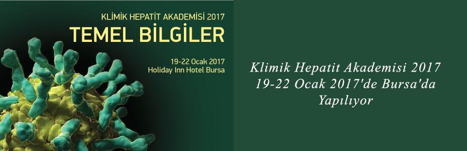 Klimik Hepatit Akademisi 2017, 19-22 Ocak 2017'de Bursa'da Yapılıyor