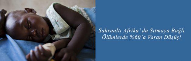 Sahraaltı Afrika' da Sıtmaya Bağlı Ölümlerde %60'a Varan Düşüş!