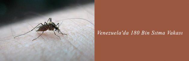 Venezuela'da 180 Bin Sıtma Vakası