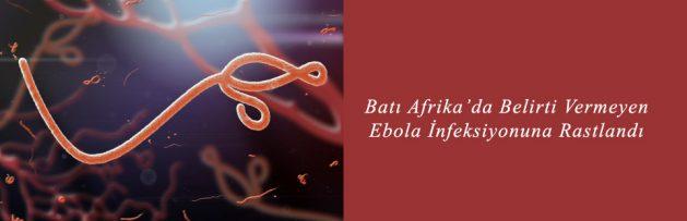 Batı Afrika'da Belirti Vermeyen Ebola İnfeksiyonuna Rastlandı