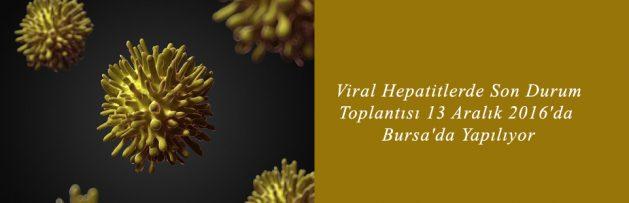Viral Hepatitlerde Son Durum Toplantısı 13 Aralık 2016'da Bursa'da Yapılıyor 2