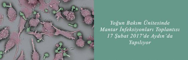 Yoğun Bakım Ünitesinde Mantar İnfeksiyonları Toplantısı 17 Şubat 2017'de Aydın'da Yapılıyor 2